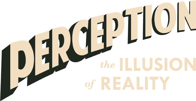Perception The Illusion Of Reality on Our Senses