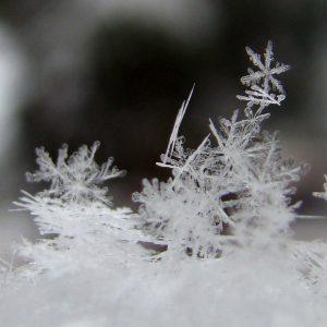 snowflake-crystals